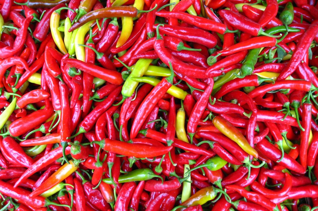 Common name: Thai chili pepper Photographed at the Civic Center Farmer's Market